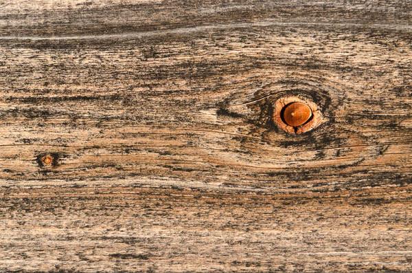 Auge im Holz