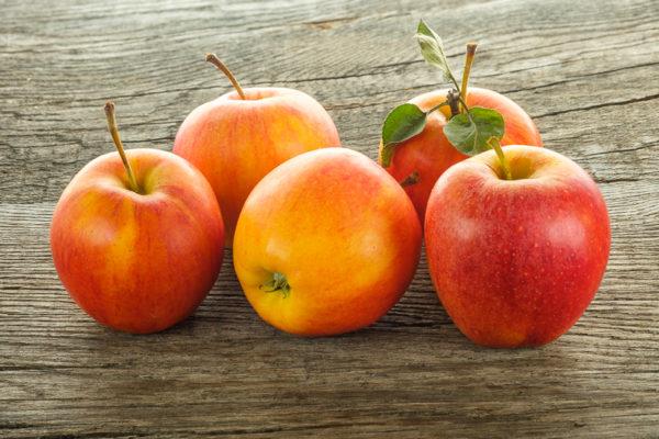 Elstar Äpfel mit Focus Stacking